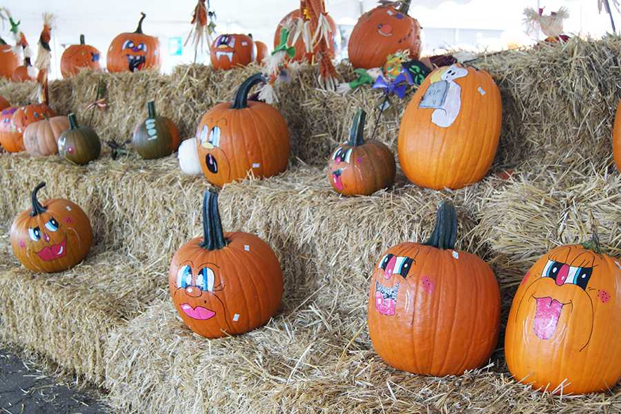 Huber%E2%80%99s+employees+paint+decorative+faces+on+pumpkins+to+sell+to+the+public.