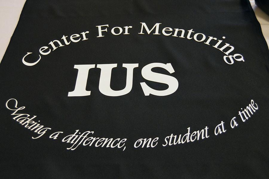 Faculty+mentors