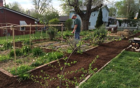 Permaculture Farming: What it is and Resources to Get Started