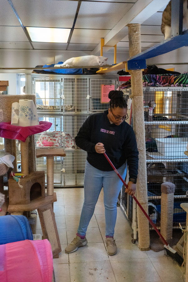 Rea+Thigpen+sweeps+up+kitty+litter+from+under+a+cage.+The+shelter+had+several+large+bins+of+litter+to+keep+up+with+all+of+the+cats+in+the+building.