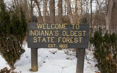The cutting controversy of logging in Indiana state forests