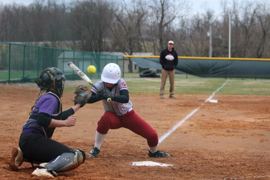 Maddie+Probus+gets+hit+in+the+shoulder+by+a+pitch+in+game+one+of+a+doubleheader+versus+Carlow+University+last+Friday.