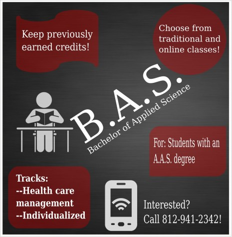 This infographic shows basic BAS information.