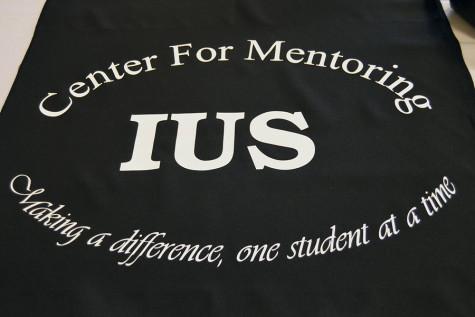 Faculty mentors