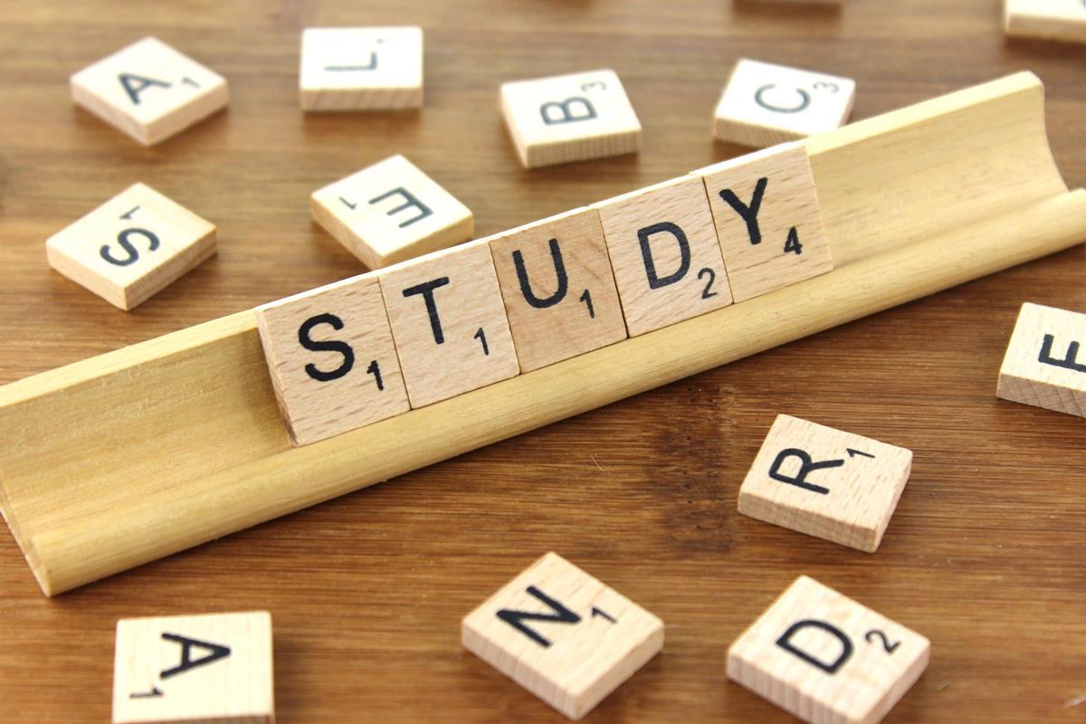 Картинки по запросу study