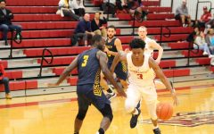 Grenadiers fall to Golden Bears despite career night from Hendricks